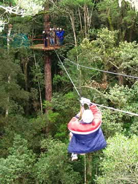 Canopy tours South Africa - Karkloof