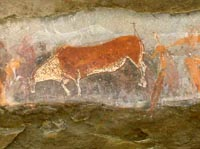 Bushman painting of an Eland ant Kamberg - One of the better examples of San rock art in South Africa